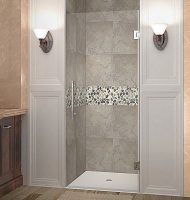 Frameless Single Door Clear Glass